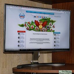 Обзор Монитора ЖК LG 24MP88HV-S 23.8 за 10500 рублей